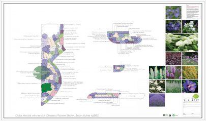 2D Planting Soft Landscaping Plan Garden Design Runwell Essex
