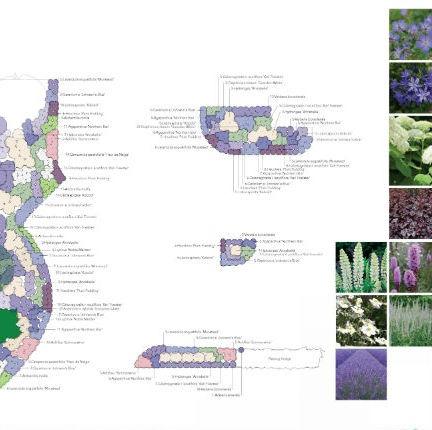 2D Planting Plan Pace Danbury Essex