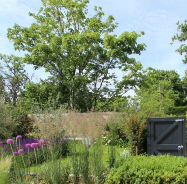Featured Image Contemporary Front Garden Little Baddow Essex