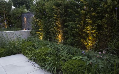 Instant Hedging Contemporary Planting Garden Design Landscaping Essex