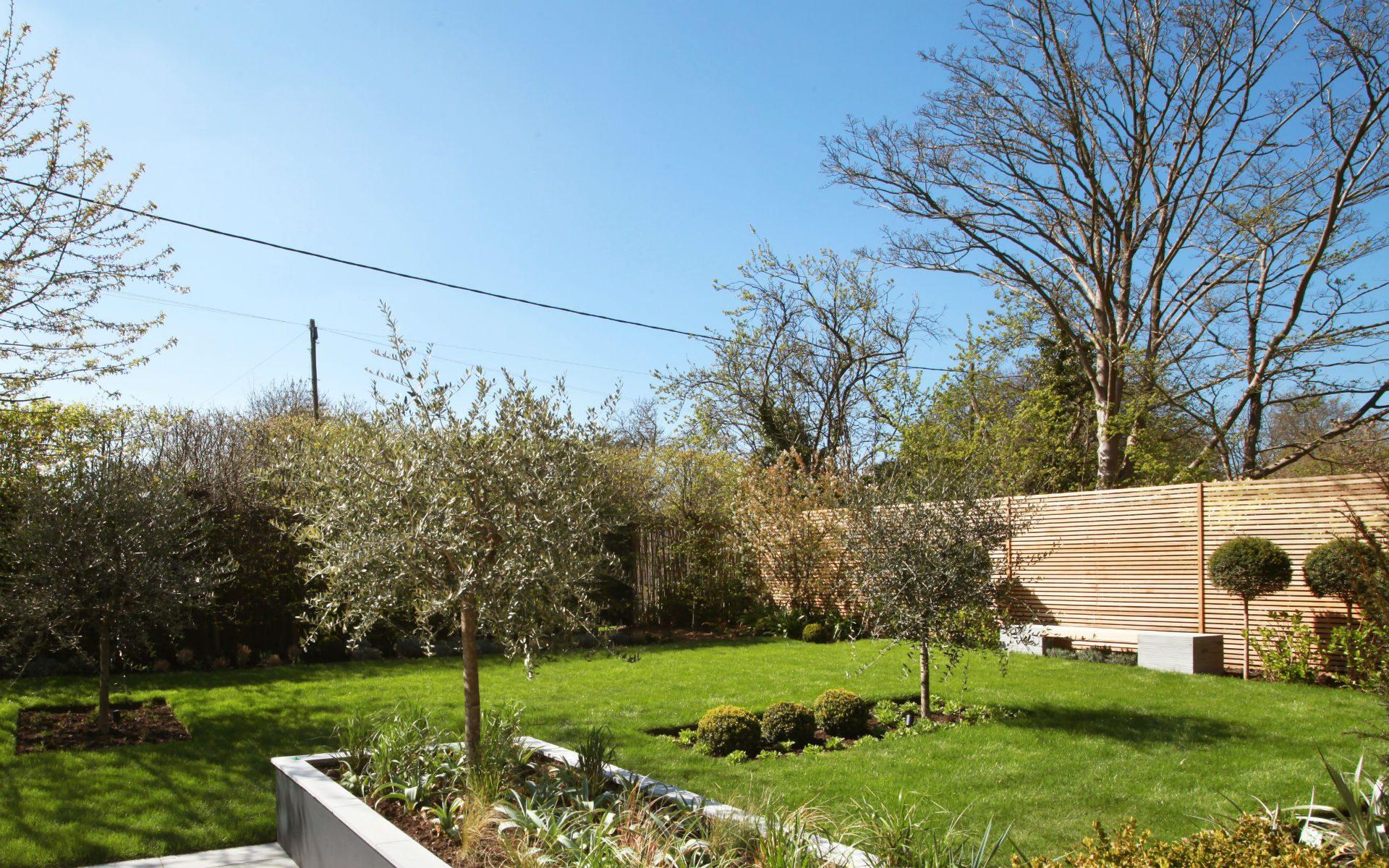 Portfolio Contemporary Front Garden Little Baddow Essex Olives Raised Bed Planters Bespoke Seating