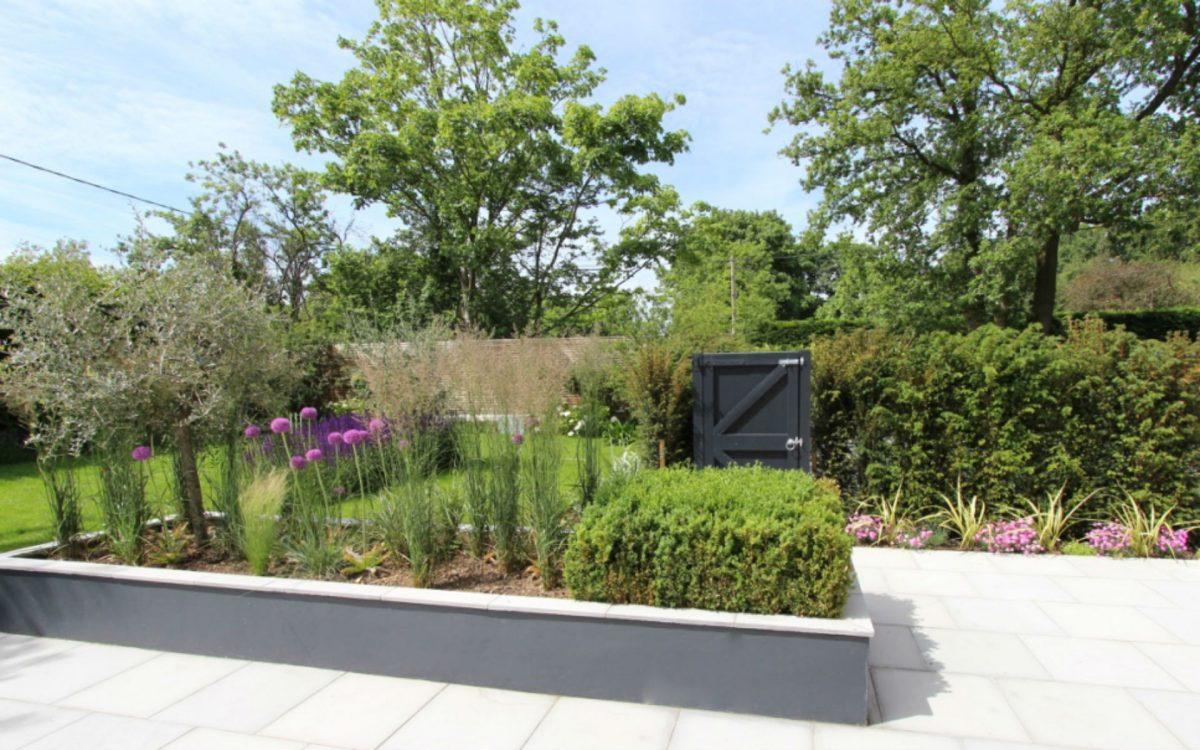 Contemporary Front Garden Little Baddow Chelmsford Essex