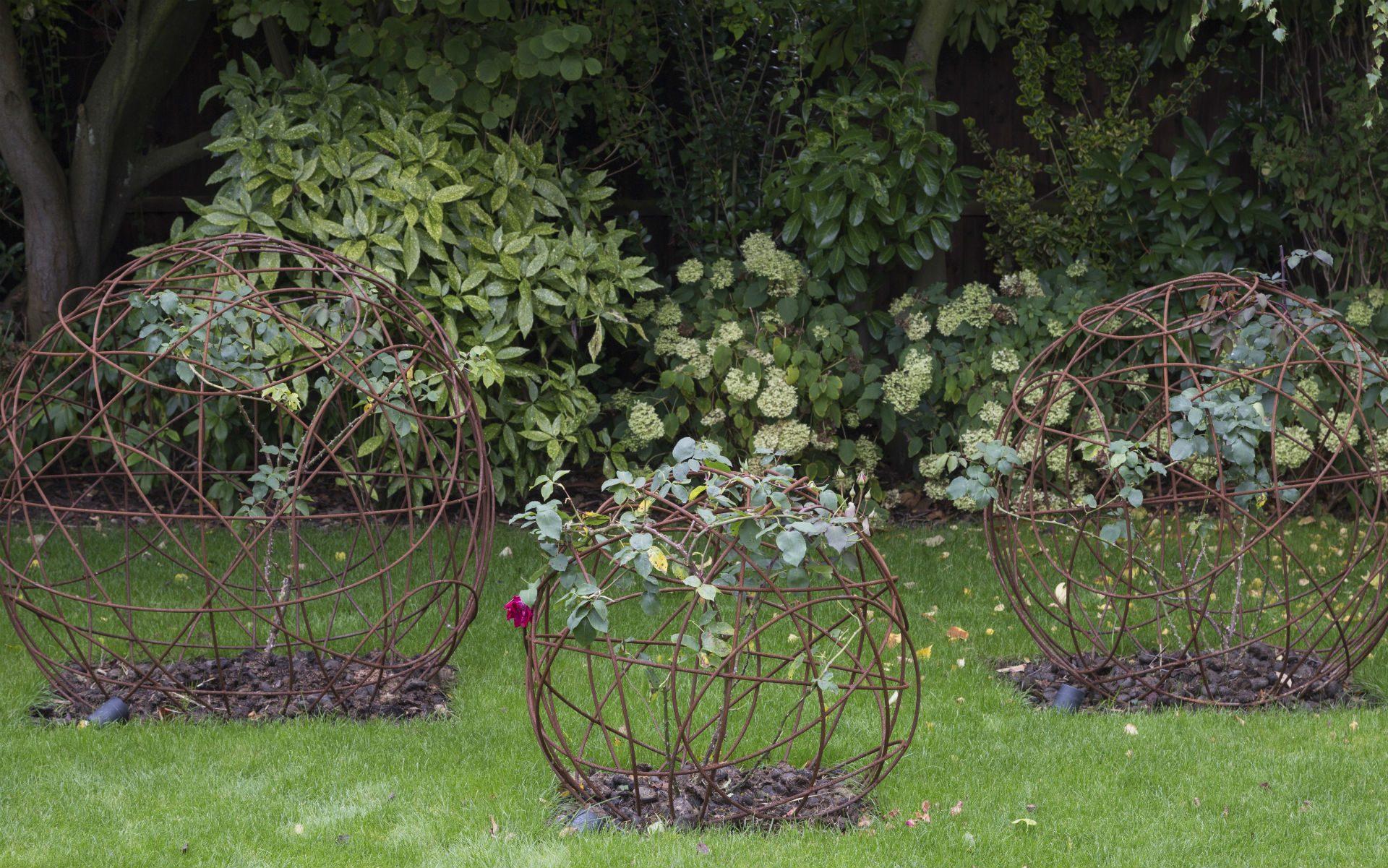 Portfolio Contemporary Garden Chelmsford Essex Rose Spheres