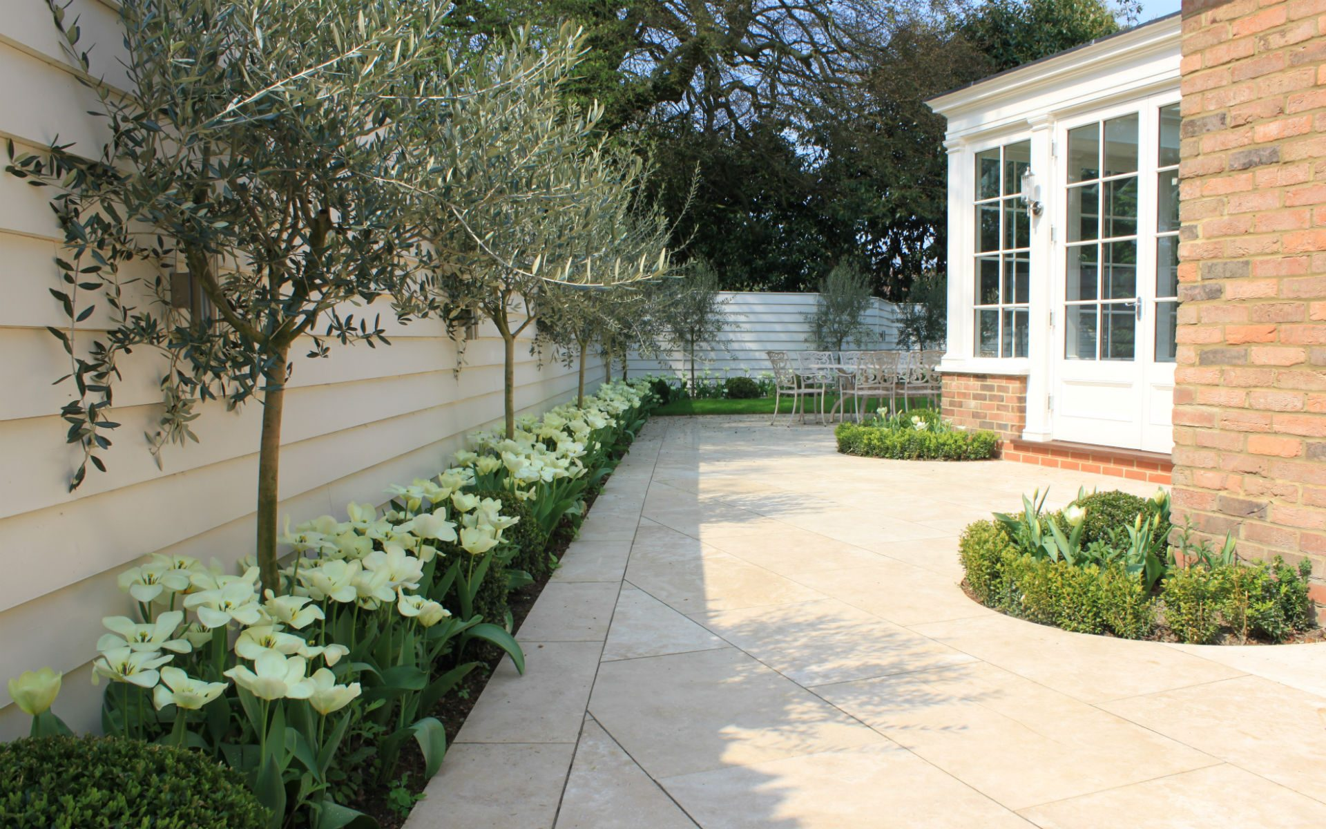 Portfolio Contemporary New England Garden Side Patio Olives Tulips White Closeboard Fencing