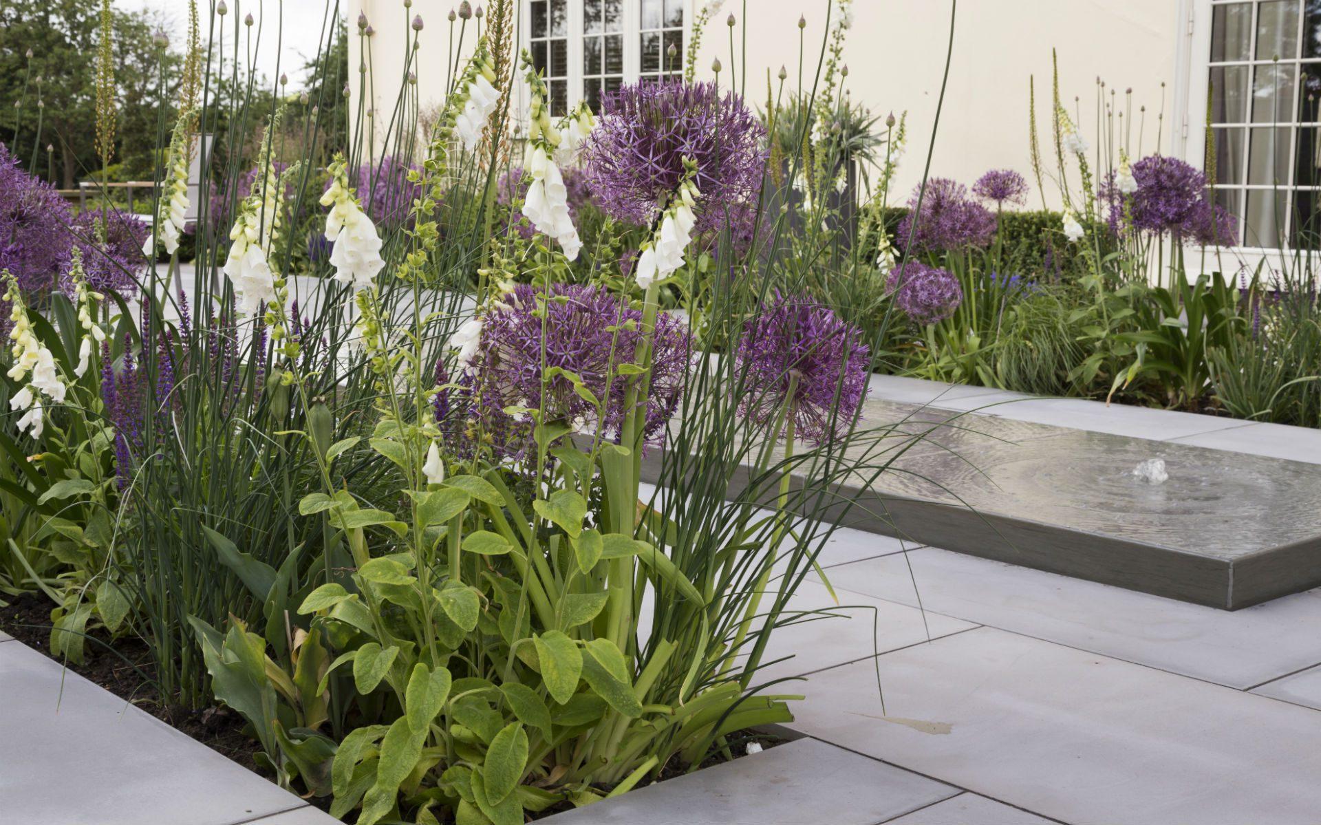 Portfolio Image BALI Award Winning Contemporary Garden Hatfield Peverel Essex