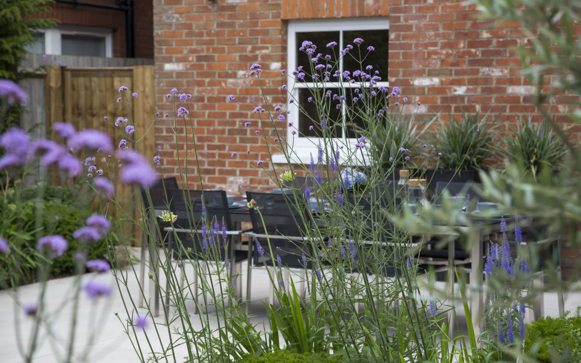 Portfolio Images Contemporary Garden Shenfield Essex