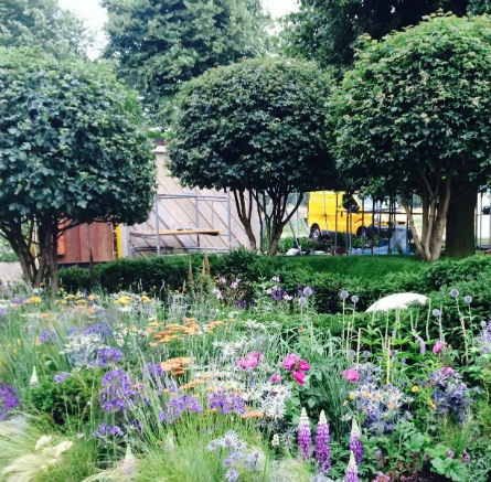 Feature Image RHS Hampton Court Flower Show 2014 Untying the Knot for the Bounce Back Foundation