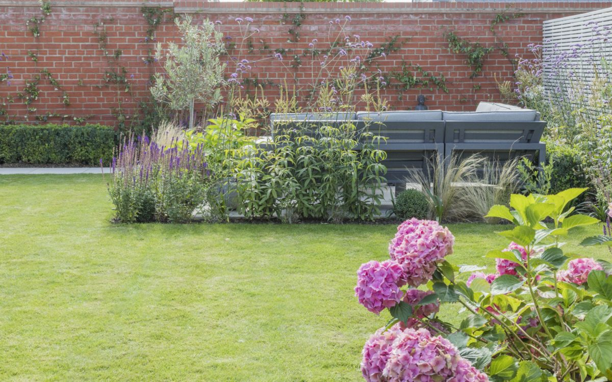 Small Urban Contemporary Garden Essex
