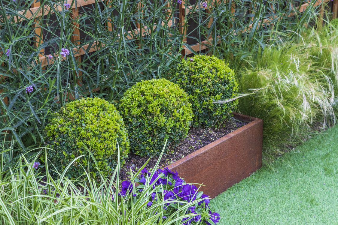 Small Urban Contemporary Garden, Sawbridgeworth Essex. Design and Build Cube 1994. Corten steel planter