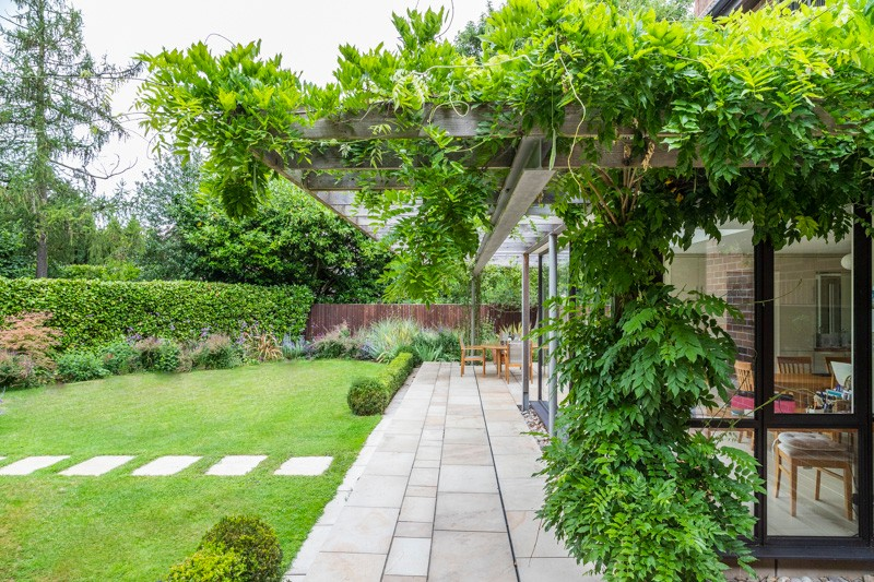 Contemporary View, Chelmsford Essex. Design and Build Cube 1994 Ltd. Pergola, Climbers, Box Hedging, woodland planting